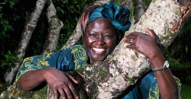 Wangari Maathai na primeirapessoa