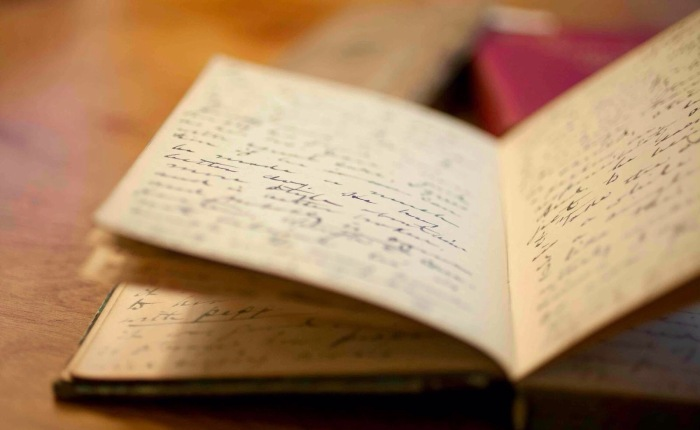 Querido diário